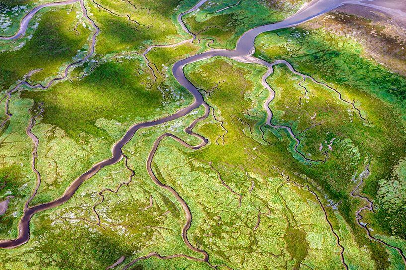 Photo aérienne d'un marais salant sur Schiermonnikoog sur Frans Lemmens