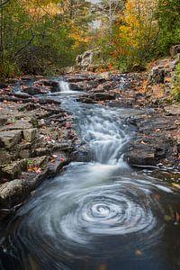 Stromende beek tussen de rotsen in Acadia National Park in de herfst, Verenigde Staten