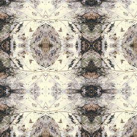 Feuille d'automne   composition kaléidoscopique sur Rob van der Pijll