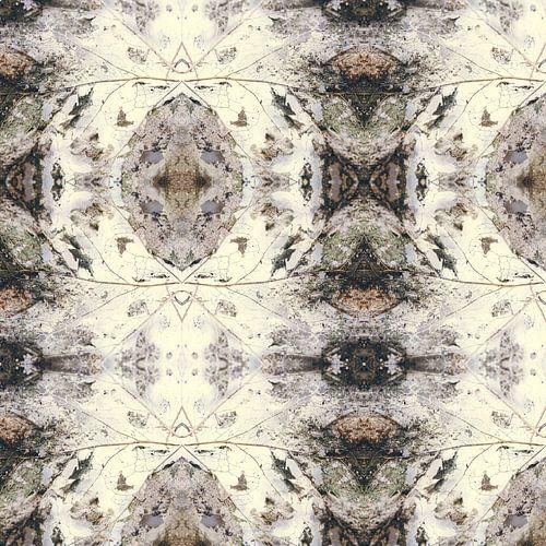 Feuille d'automne   composition kaléidoscopique