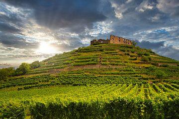 Kasteelruïne in Staufen im Breisgau van PhotoArt Thomas Klee