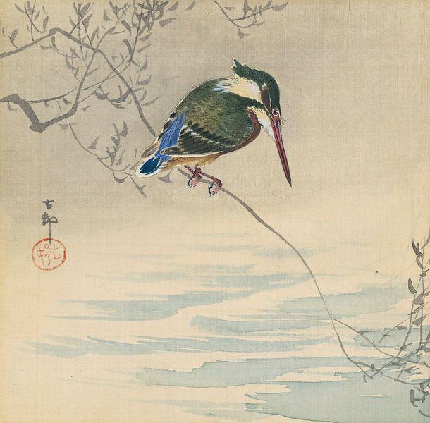 Eisvogel aus Ohara Koson von Gave Meesters