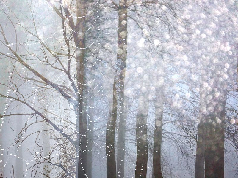 Sprookjes Bos van Sonja Pixels