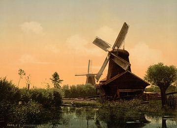 Moulins à vent sur la Noordendijk, Dordrecht sur Vintage Afbeeldingen