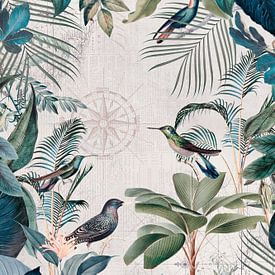 Die große Reise der Vögel von Andrea Haase