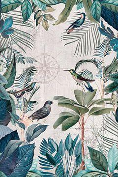 De grote reis van de vogels van Andrea Haase