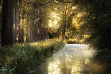 Heilwasser von Kees van Dongen