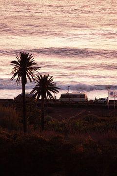 Beach Life van Kim Herber