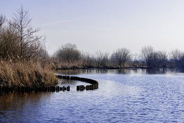 Zicht op de Reeuwijkse Plassen en haar natuur von Leontien van der Willik-de Jonge