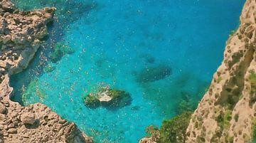 Capri Turquoise van Dirk van der Ven