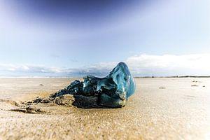 Blauw op het strand