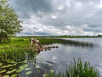Sfeervol landschap von Richard Reuser
