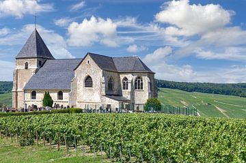 Saint Martin de Chavot,région Champagne,Epernay