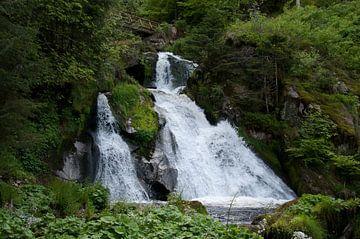 Triberg waterval van