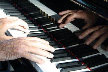Quatre mains von Jetty Boterhoek