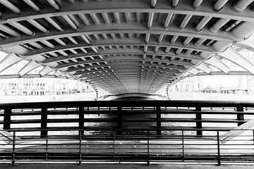 Kronprinzenbrücke von unten in schwarz-weiß, die Straßenbrücke des spanischen Architekten Santiago C von Maren Winter