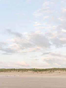 Kolonie meeuwen op het strand onder schilderachtige wolkenlucht van Laura-anne Grimbergen