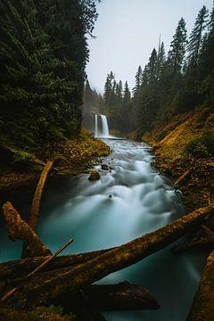 Koosah-Wasserfall. von Maikel Claassen Fotografie