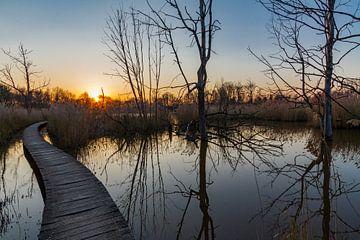 Wandelpad in Het Vinne, zonsondergang in Zoutleeuw van Koen Henderickx