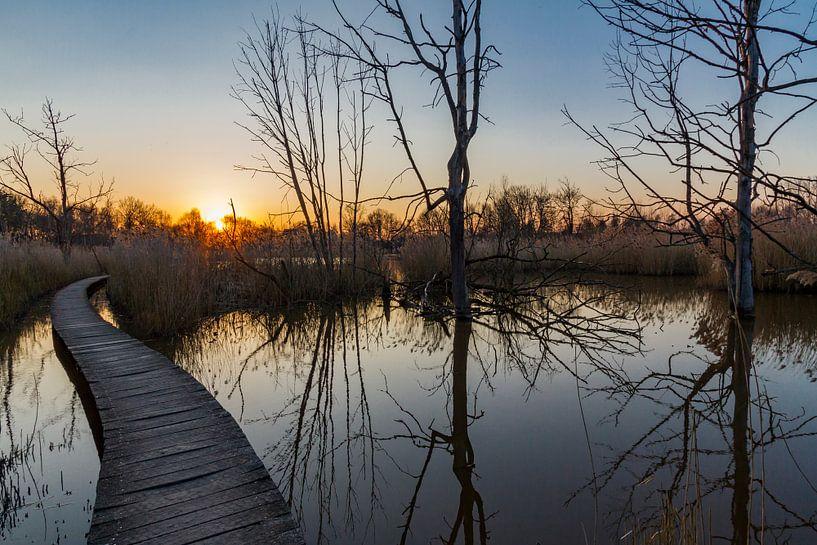 Wandelpad in Het Vinne, zonsondergang in Zoutleeuw van Easycopters