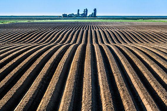 Landbouwgrond in het noorden van Friesland vlak onder de Noordzeedijk