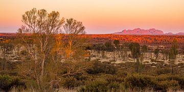 Outback Australien - Kata Tjuta im Red Centre von Thorsten Bartberger