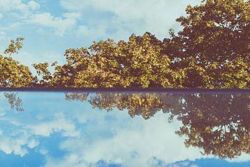 Dakraam met bomen uitzicht blauwe lucht van Lisanne Koopmans