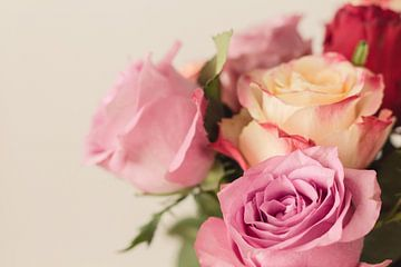 Pastel rozen sur Ester Dammers