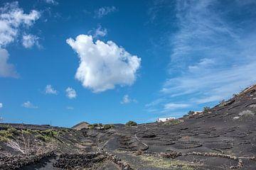 Landschap op Lanzarote, een van de Spaanse Canarische Eilanden in de streek La Geria sur