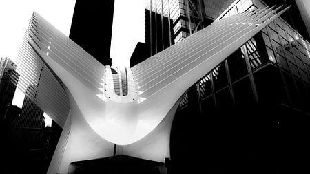 Santiago Calatrava's Oculus (New York) sur Perry van Herpen