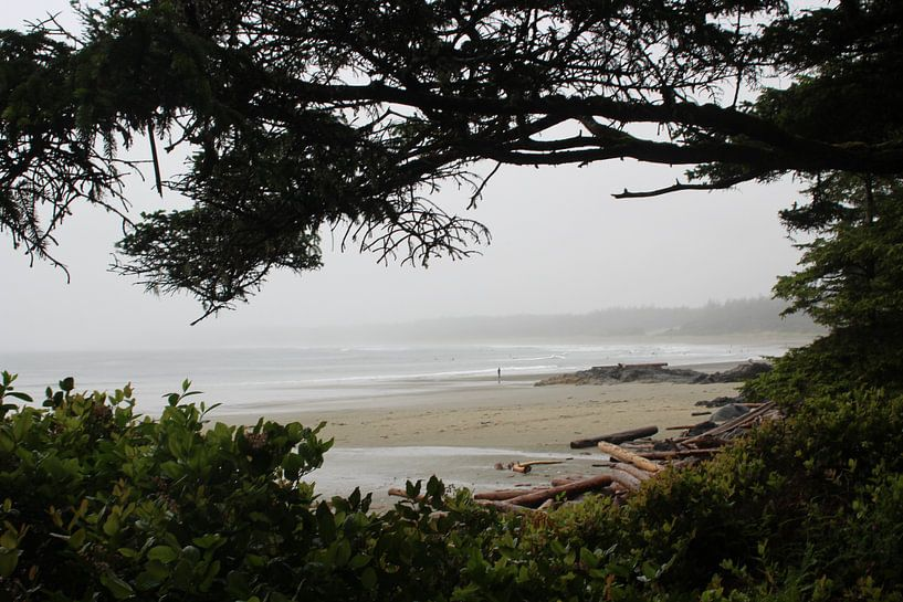 Beach in Tofino   Schooner Cove van Elisabeth Eisbach