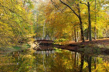 Herbstfarben und Spiegelung, Brücke im Park von Peter Haastrecht, van