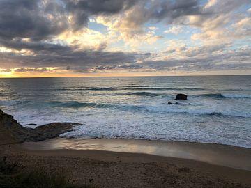 """De Spaanse kust """"liencres"""" van Afrodite Zegers"""