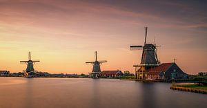 Drie windmolens op Zaanse Schans rond zonsondergang van