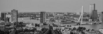 Skyline Rotterdam (z/w) van John Ouwens