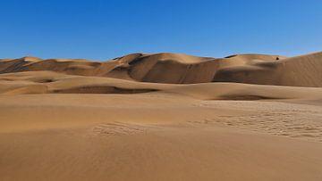 De Duinen van de Namib Woestijn van Timon Schneider