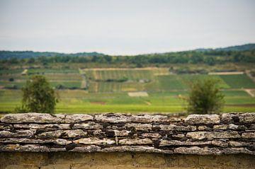 Le mur sur Onno van Kuik
