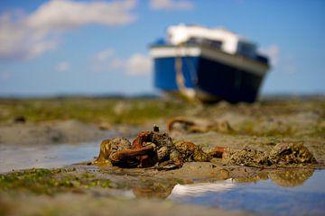 Boot op het Bretonse wad van Reinier van de Pol