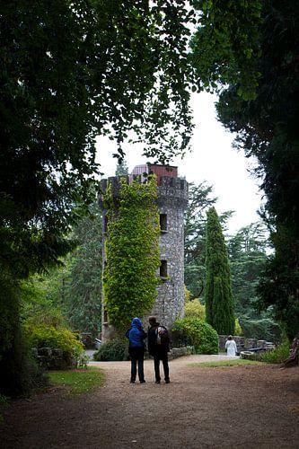 Romantiek in Powerscourt Gardens van