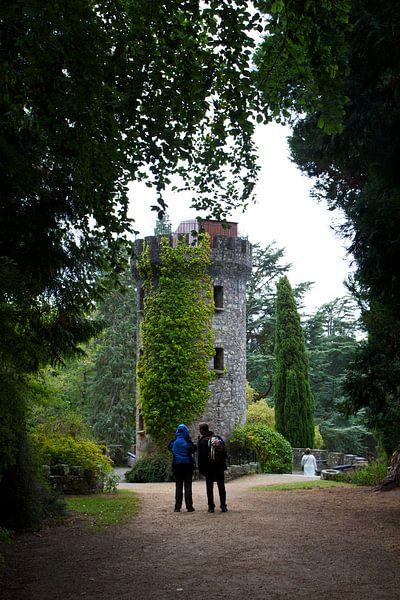 Romantiek in Powerscourt Gardens