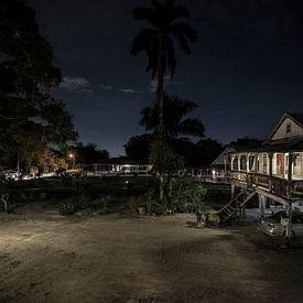 Plantage Peperpot Suriname van Edward van Hees