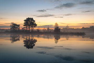 Putse Moer sur le Heather Kalmthoutse Heide en Belgique sur Jos Pannekoek