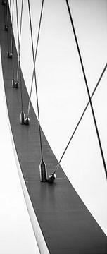 abstract lijnen van Robby Stifter