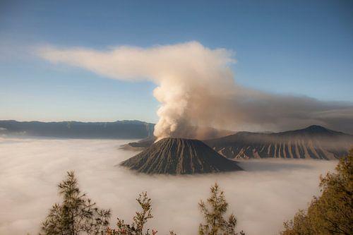 Blick auf den Vulkan Bromo von Koen van der Werf