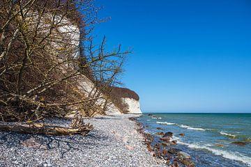 Falaises de craie sur la côte de la mer Baltique sur l'île de Rügen sur Rico Ködder