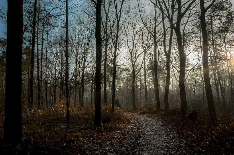 De eenzame ruiter van Jan Diepeveen
