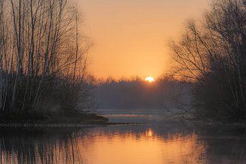 Goldener See von Tania Perneel