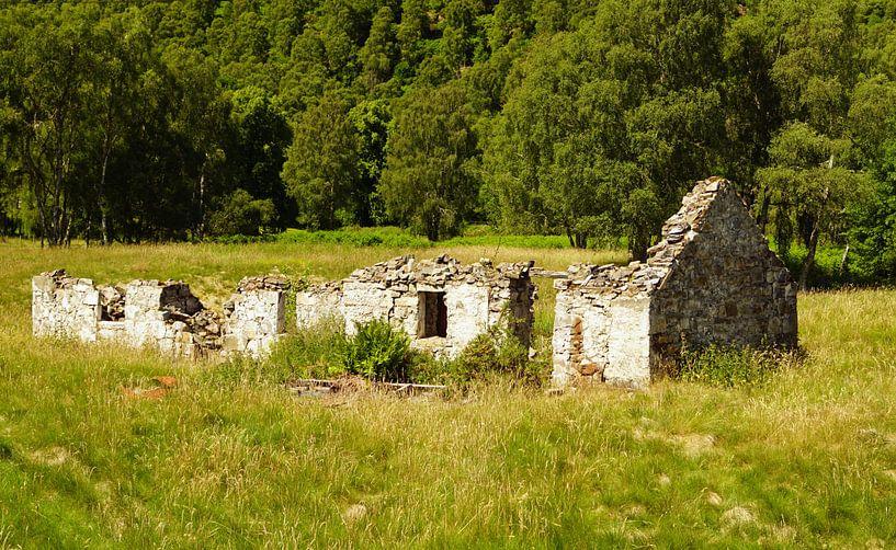 Ruïne in Schotland. van Babetts Bildergalerie