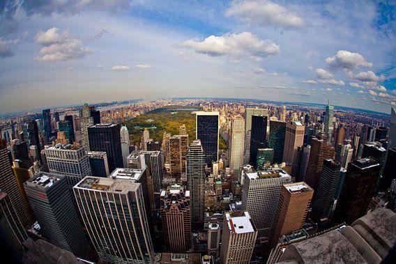 View on Central Park van Joran Maaswinkel