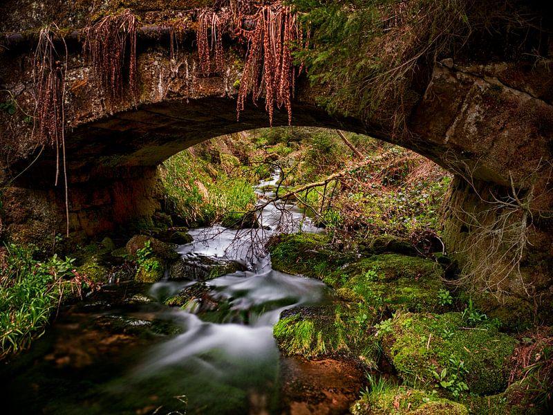 de oude brug van Alexander Koenders